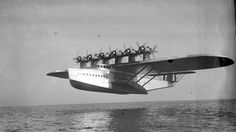 BBC - Future - Aviation giants: Ten super-sized planes from history Boat with wings Another German giant was the Dornier Do X, a flying boat powered by 12 engines which could carry up to 100 passengers. It weighed a massive 56 tonnes. (Copyright: Bundesarchiv)