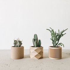 Set of 3 small indoor planters. Minimalist & geometric design for home decor. Organic and sustainable design. Wood Planters, Indoor Planters, Planter Pots, Hanging Terrarium, Hanging Planters, Vase Origami, Small Potted Plants, Cactus Print, Wood Design