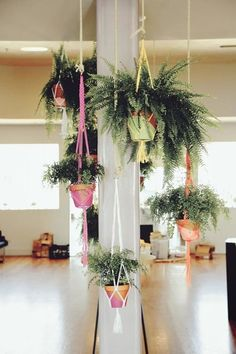 Did You Know? Macramé Plant Hangers are On-Trend ... Again