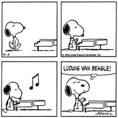 Ludwig van Beethoven?...Eh No... www.cancorso.it cancorso2013, cancorso, cani, cane, concorso, concorsi, contest, ilmessaggero, quotidiano, animali, storie, canstorie, coppie, cancoppie,vignetta, vignette, fumetto, fumetti citazione, citazioni, snoopy