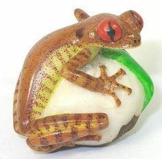 Brown Tree Frog Tagua Carving 31831   eBay