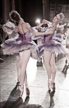 mauve ballet ✿⊱╮