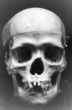 Skull by joemorin.deviantart.com