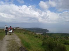 The intrepid walkers head across Cefn Bryn, back towards Three Cliffs....
