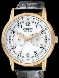 Citizen AO9003-16Ais a goldtone Eco-Drive watch that comes with day and date sub-dials.