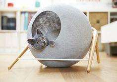 04-galeria-moveis-gatos