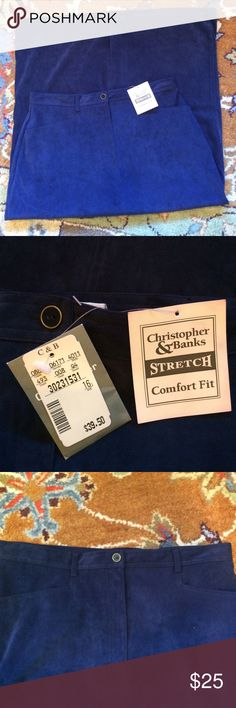 "NWT CHRISTOPHER&BANKS FAUX SUEDE SKIRT! Beautiful BLUE FAUX SUEDE SKIRT! 35"" long zip front with button belt loops& two front pockets. 97%/3% spandex ""stretch ""& comfort fit!! NWT slit- bottom rear Christopher & Banks Skirts"