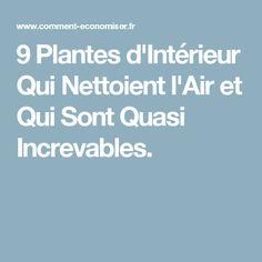 9 Plantes d'Intérieur Qui Nettoient l'Air et Qui Sont Quasi Increvables.