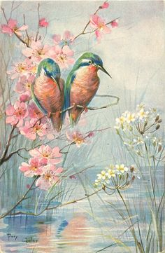 two kingfishers, pink blossom, white flowers growing in water