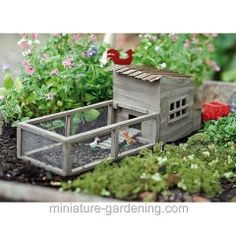 Chicken Coop with Chickens
