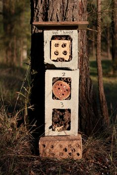 Native-solitary-bee-hotel-made-from-recycled-materials. Little eco footprints