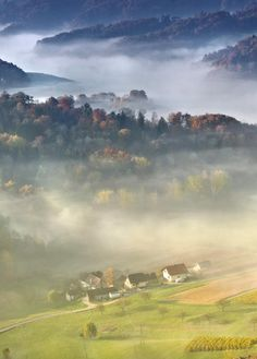 Morning in the country by Darko Geršak (Slovenia)