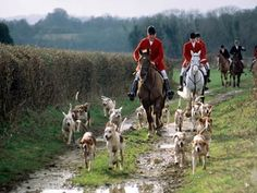 English Fox Hunt! Ah how I adore English Hunts! So wonderful! Pure perfection! I would just love to go on one in the future!