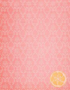 LemonDrop Shop - Vintage Wallpaper Blush