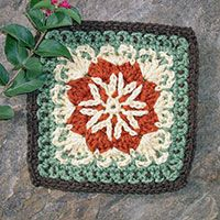 Motif from Lacy Stars Afghan ~ pattern can be found here:  http://www.freepatterns.com/detail.html?login=1=FC00065