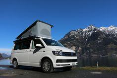 Schnauzbus.ch T6 Camper - Off- Topic / Ich stell mich vor ... - VWBUSFORUM.CH