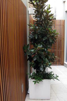Concrete Planter Boxes, Planter Pots, Timber Battens, Street Furniture, Decking, Garden Inspiration, Fence, Cube, New Homes