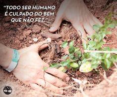 """""""Todo ser humano é culpado do bem que não fez."""" – Voltaire #Frases #Earthkeepers"""