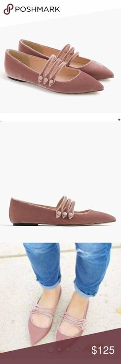 J crew strappy pointed toe flats in velvet New in box.  No trades.  Price firm. J. Crew Shoes Flats & Loafers