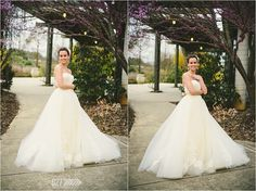 Raleigh Bridal Portraits :: JC Raulston Arboretum