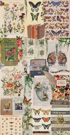 garden of flowers Photo Wall Collage, Collage Art, Collages, Aesthetic Pastel Wallpaper, Aesthetic Wallpapers, Poster Prints, Art Prints, Posters, Aesthetic Collage