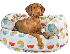 Ultra-cozy and ultra chic Double Donut Luna Bed from Bowsers. Gorgeously patterned microvelvet!