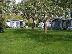 Camping de Boshoek - Zeeland In boomgaard