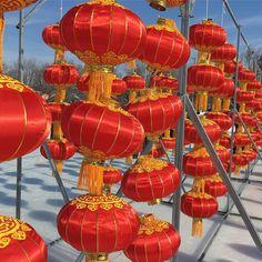 The Chinese lanterns displayed at #ottawa Ice Dragon Boat Festival. #igersottawa #latergram