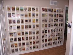 TaylorWest: Timeline Wall, Classical conversations, cycle 1, 2, 3