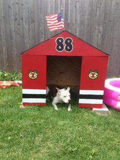 Kaner even has his own Blackhawks dog house! Thanks for the photo @Scobie_Trice. #HockeyPets