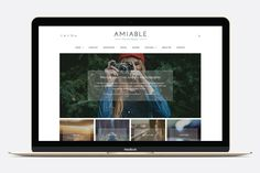 Amiable - Responsive WordPress Blog