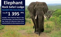 Explore the Elephant Flock Safari Lodge. Call us on 031 2010 630 for more info.