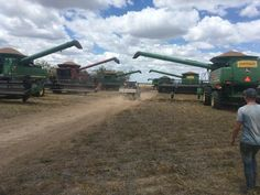 Chickpea harvest at Moree, nsw Australia.