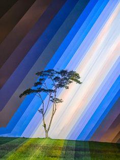 time slice landscape photography fong qi wei 1. Cultura Inquieta 2. PORTADA