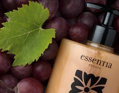 """Check out new work on my @Behance portfolio: """"Grape Uva : Panel Display of Essentia products"""" http://on.be.net/1PpLfOI"""