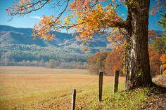 a gorgeous landscape via @Jake Kern