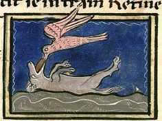 'The fox plays dead to lure birds within its reach.' Bibliothèque Nationale de France, Bestiaire de Moyen Âge. Bibliothèque Nationale de France,