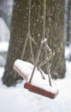 Snowy Swing #winterwishes