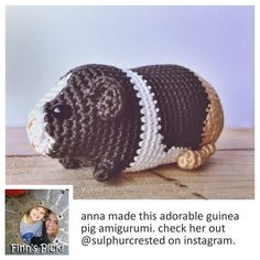 Finn's Pick: Everyone should live their life the GUINEA PIG WAY! #crochet #amigurumi #pets