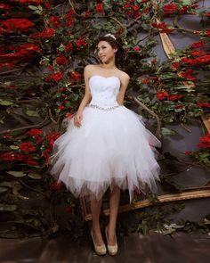 1000 Images About The Dress On Pinterest Short Wedding Dresses Reception