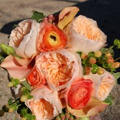 like the colors, juliet roses are beauties