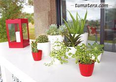 Diseño elegante y moderno, con forma redondeada asociada a una amplia gama de tamaños y colores. Encuentralas en: http://www.tumatera.co/products/mpa-1614-san-remo/