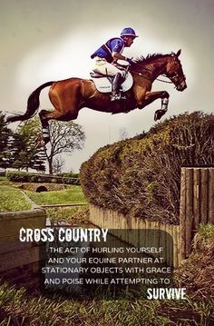 """""""Cross Country: The act of hurling yourself and your equine partner at stationary objects with grace and poise while attempting to survive."""" NOW this IS CROSS COUNTRY, NUT RUNNING! Horse Girl, Horse Love, All The Pretty Horses, Beautiful Horses, Olympic Equestrian, Equestrian Memes, Cross Country Jumps, Horse Quotes, To Infinity And Beyond"""