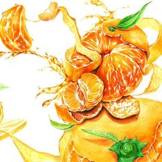 귤 기초디자인: Watercolor Fruit, Fruit Painting, Watercolor Paintings, Watercolour, Food Illustrations, Illustration Art, Copic Drawings, Art Assignments, Sketching Tips