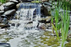 Gallery - Kingdom Landscaping | MD & PA