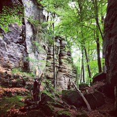 Mullerthal/Petite Suisse, Grand Duchy of Luxembourg. CGinLUX Gallery.