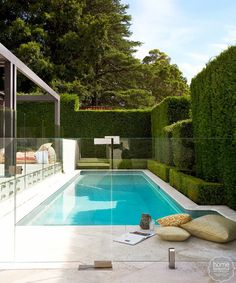 Lush pool Glass fence Hedge fencing