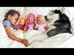 تعلم الألوان مع دمى طفل - أغنية ممتعة للأطفال - اللعب مع متعة الكلب - YouTube Nursery Rhymes Songs, Baby Songs, Educational Videos, Baby Needs, Entertainment, Cake Pops, Husky, Youtube, Memes