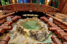 Hot Spring I throw pennies into this is for a great cause and what better place to make a wish then in disney