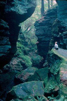 Parfrey's Glen, Devil's Lake State Park - http://dnr.wi.gov/topic/lands/naturalareas/index.asp?sna=1